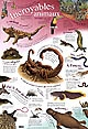 Posters educatifs/incroyables creatures
